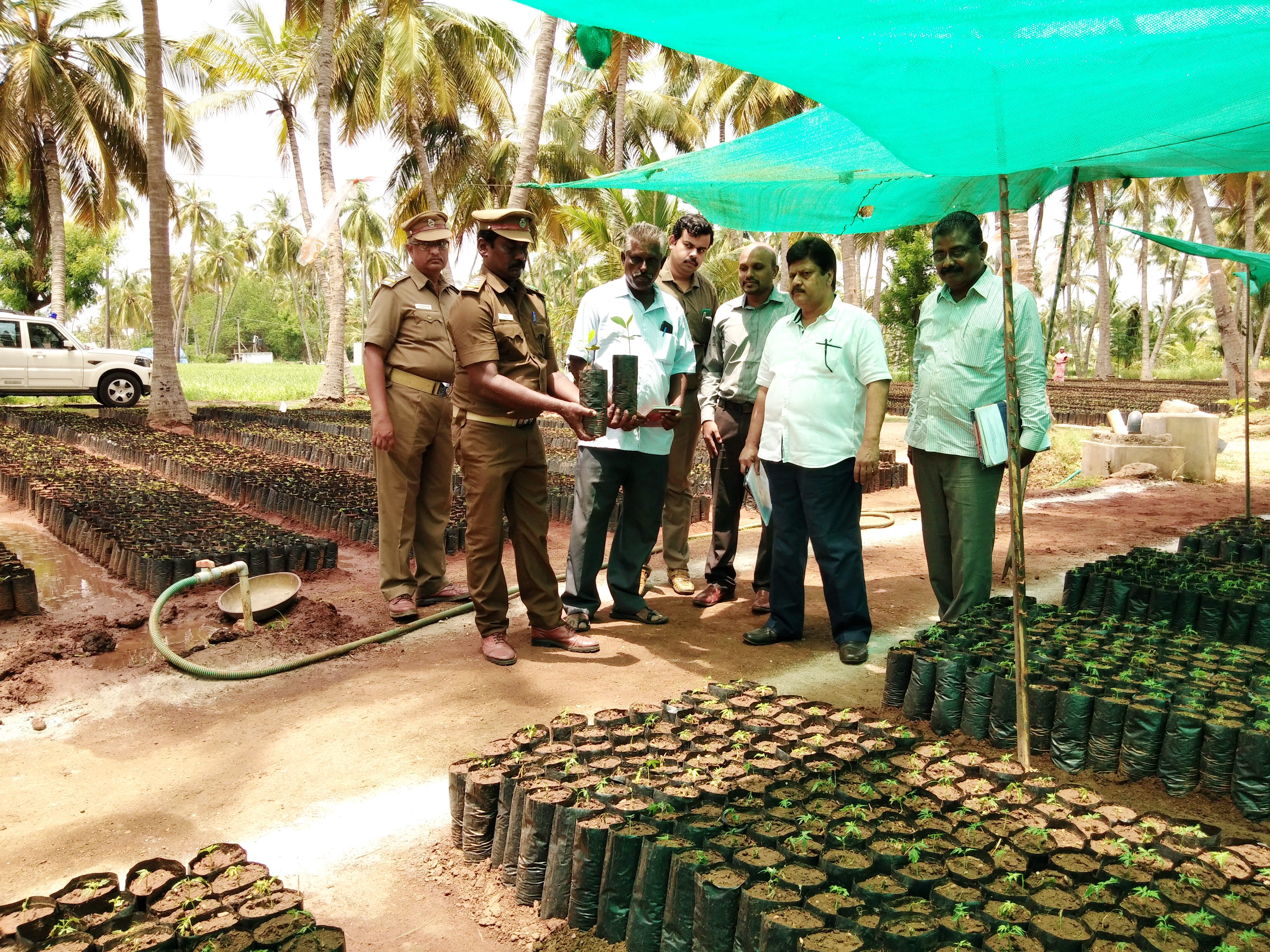 Tree Cultivation in Private Lands – Two Lakhs Saplings given to Farmers
